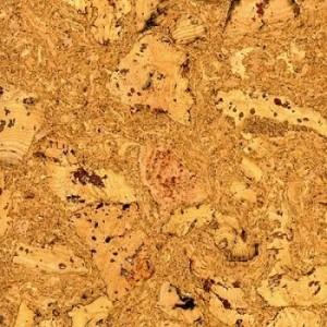 Cork Flooring Assessment