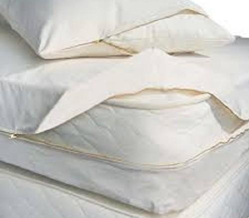 Bedbug Barriers
